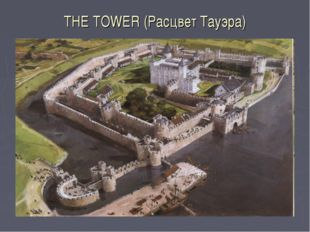 THE TOWER (Расцвет Тауэра)