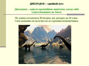 ДИПЛОДОК – «двойной луч» Диплодоки – одни из крупнейших животных, когда-либо