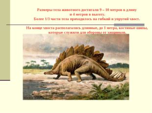Размеры тела животного достигали 9 – 10 метров в длину и 4 метров в высоту.
