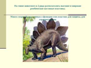 На спине животного в 2 ряда располагались высокие и широкие ромбические кост