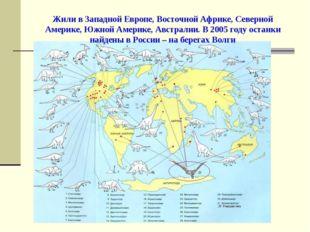 Жили в Западной Европе, Восточной Африке, Северной Америке, Южной Америке, Ав
