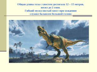 Общая длина тела с хвостом достигала 12 – 15 метров, весил до 2 тонн. Гибкий