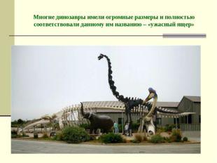 Многие динозавры имели огромные размеры и полностью соответствовали данному и