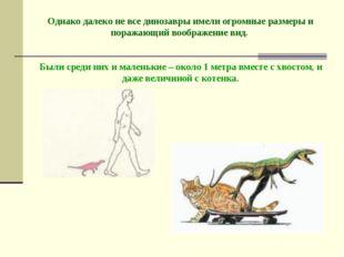 Однако далеко не все динозавры имели огромные размеры и поражающий воображен