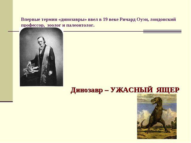 Впервые термин «динозавры» ввел в 19 веке Ричард Оуэн, лондонский профессор,...