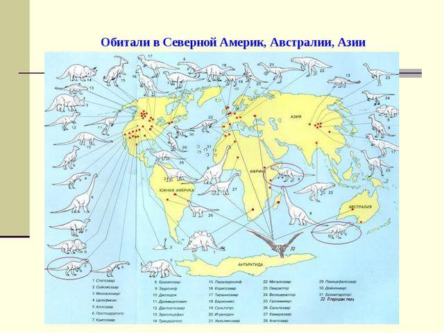 Обитали в Северной Америк, Австралии, Азии