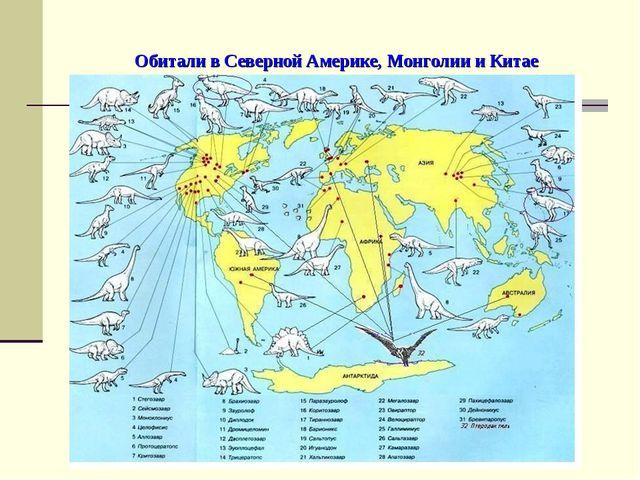 Обитали в Северной Америке, Монголии и Китае