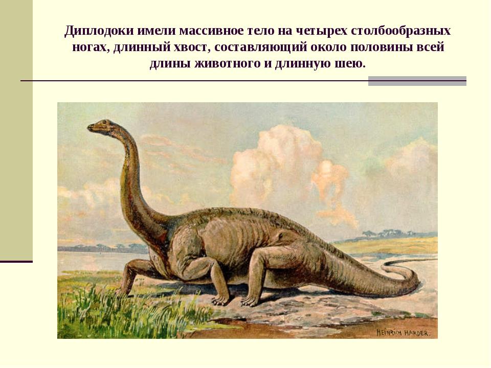 Диплодоки имели массивное тело на четырех столбообразных ногах, длинный хвост...