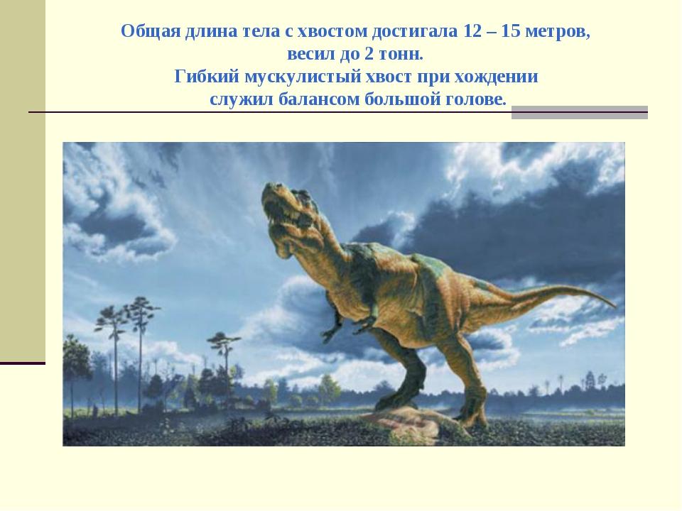 Общая длина тела с хвостом достигала 12 – 15 метров, весил до 2 тонн. Гибкий...