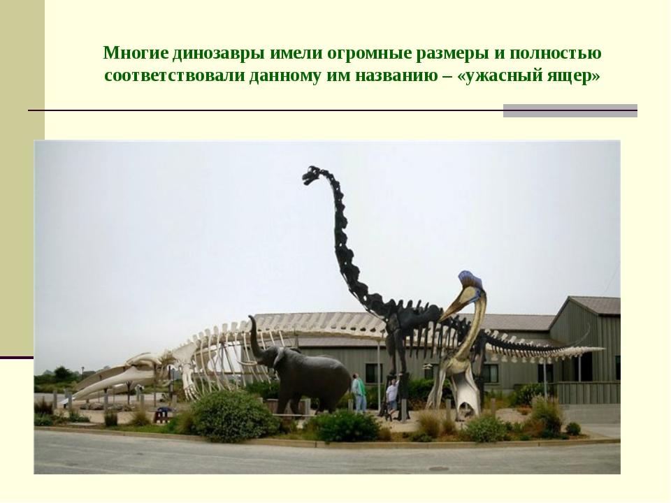 Многие динозавры имели огромные размеры и полностью соответствовали данному и...