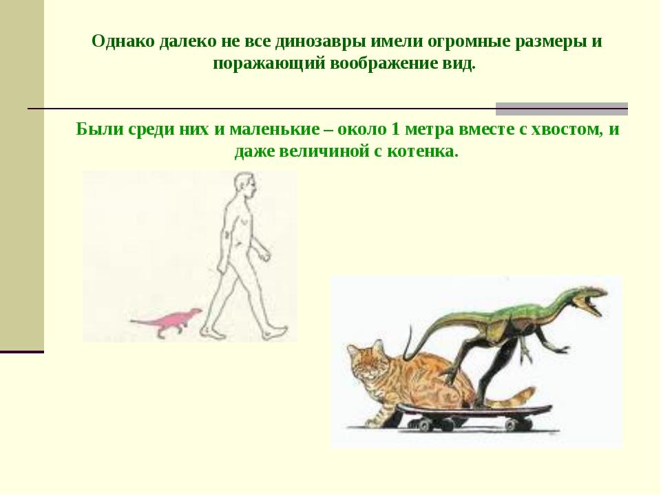 Однако далеко не все динозавры имели огромные размеры и поражающий воображен...