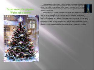 Родественское дерево (Weihnachtsbaum) Традиция наряжать елку пришла к нам из