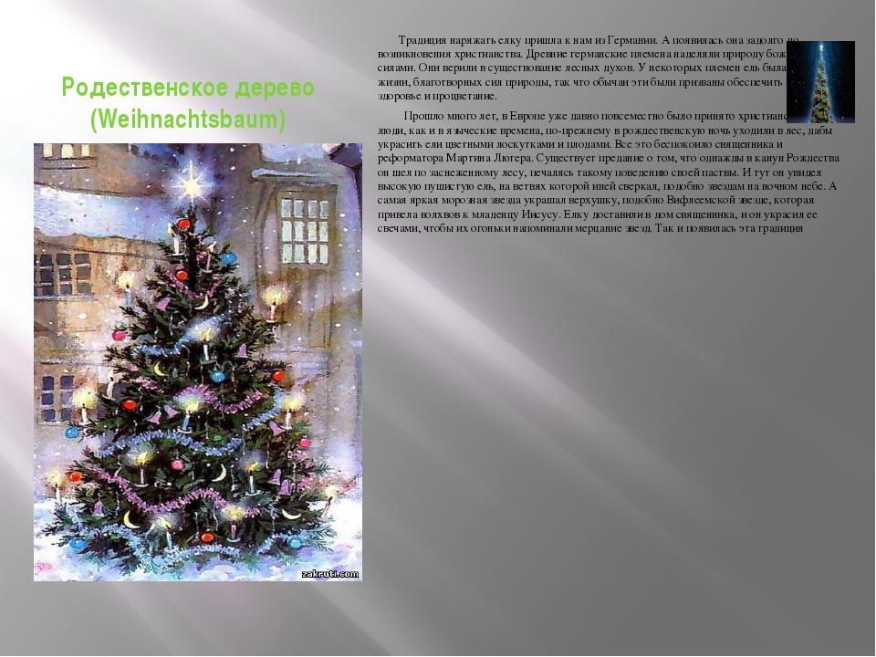 Родественское дерево (Weihnachtsbaum) Традиция наряжать елку пришла к нам из...