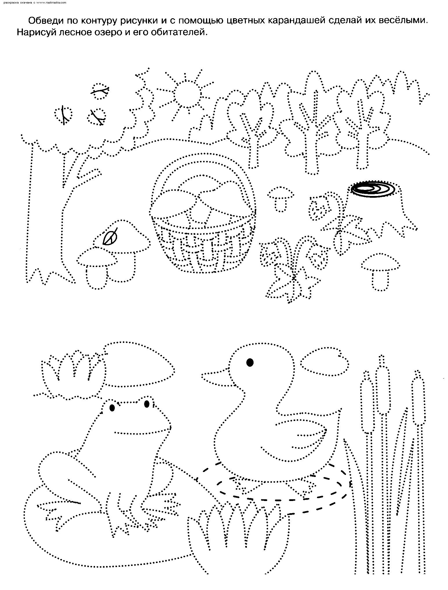 Раскраски по точкам и контуру