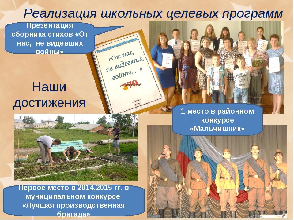 Реализация школьных целевых программ Наши достижения Презентация сборника сти...