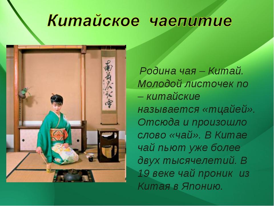 Родина чая – Китай. Молодой листочек по – китайские называется «тцайей». Отс...