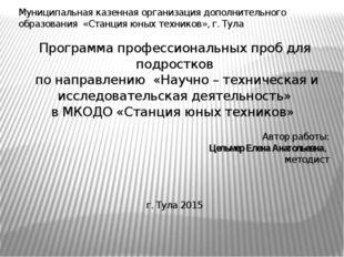 Муниципальная казенная организация дополнительного образования «Станция юных