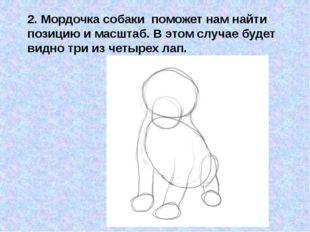 2. Мордочка собаки поможет нам найти позицию и масштаб. В этом случае будет в