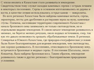 С эпохи неолита в Казахстане стало развиваться земледелие. Свидетельством том