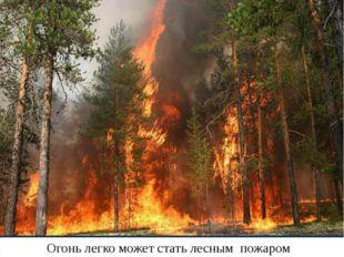 Огонь легко может стать лесным пожаром