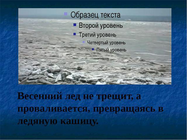 Весенний лед не трещит, а проваливается, превращаясь в ледяную кашицу.