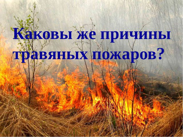 Каковы же причины травяных пожаров?