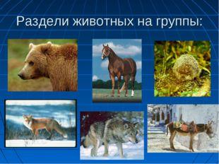 Раздели животных на группы: