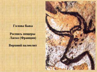 Голова быка Роспись пещеры Ласко (Франция) Верхний палеолит