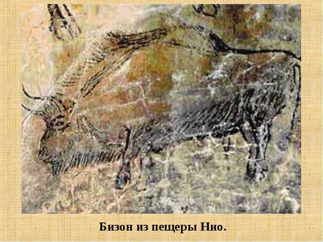 Бизон из пещеры Нио.
