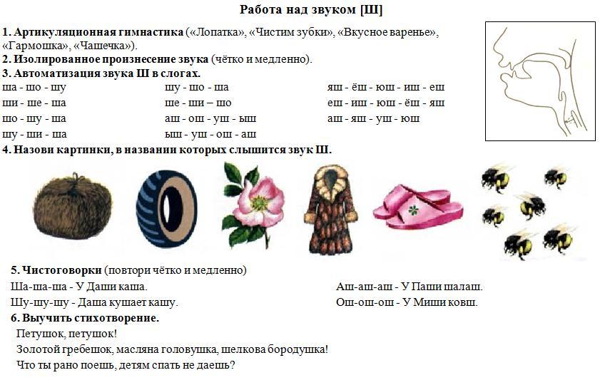 http://kokarevala.narod.ru/olderfiles/3/zvuk_sh.jpg