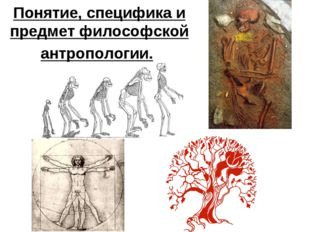 Понятие, специфика и предмет философской антропологии.