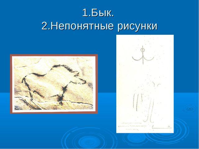 1.Бык. 2.Непонятные рисунки