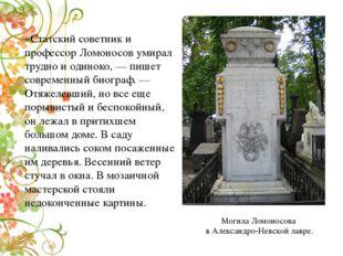 «Статский советник и профессор Ломоносов умирал трудно и одиноко,— пишет сов