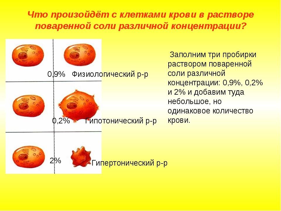 Что произойдёт с клетками крови в растворе поваренной соли различной концентр...