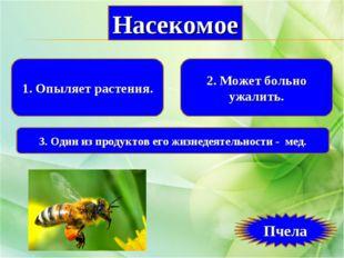 1. Опыляет растения. 2. Может больно ужалить. 3. Один из продуктов его жизнед