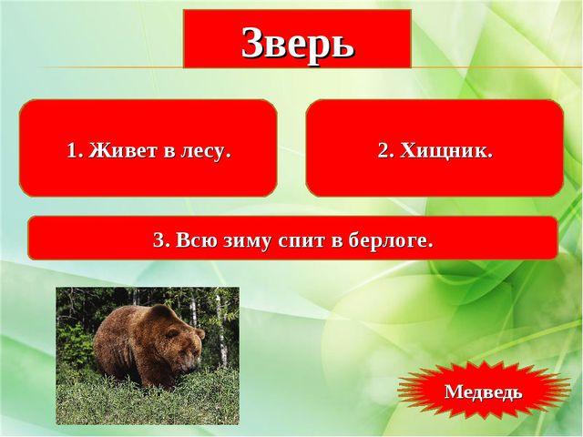1. Живет в лесу. 2. Хищник. 3. Всю зиму спит в берлоге. Зверь Медведь