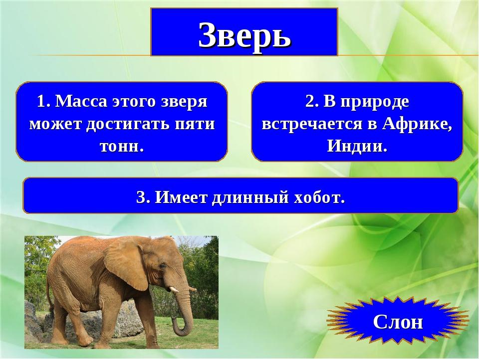 1. Масса этого зверя может достигать пяти тонн. 2. В природе встречается в Аф...