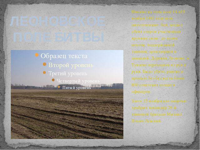 Именно на этом поле 14 и15 ноября 1941 года шли ожесточенные бои, когда с обе...