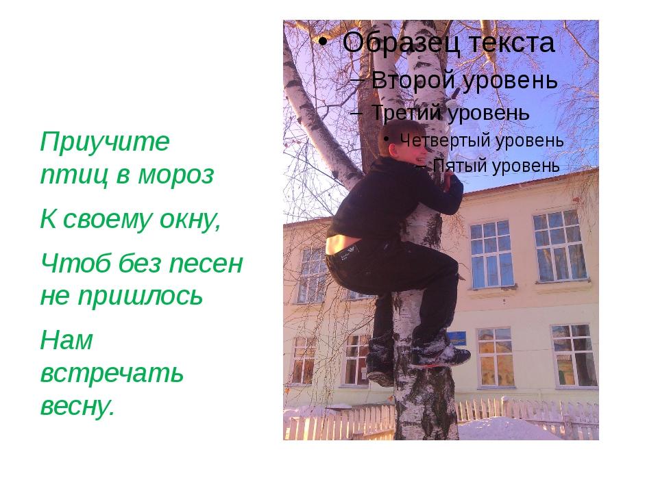 Приучите птиц в мороз К своему окну, Чтоб без песен не пришлось  Нам встре...