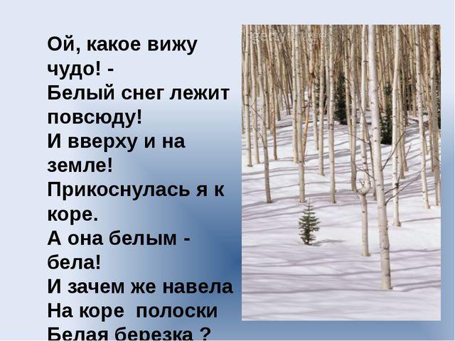 Ой, какое вижу чудо! - Белый снег лежит повсюду! И вверху и на земле! Прикосн...