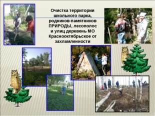 Очистка территории школьного парка, родников-памятников ПРИРОДЫ, лесополос и