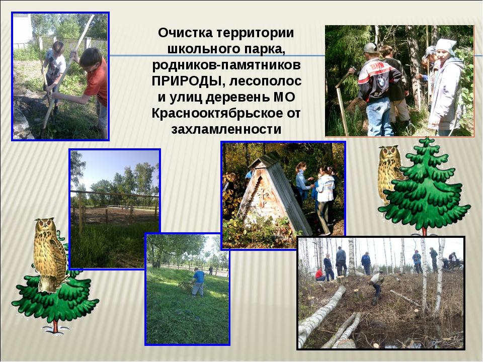 Очистка территории школьного парка, родников-памятников ПРИРОДЫ, лесополос и...