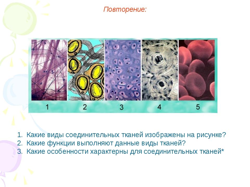 Повторение: Какие виды соединительных тканей изображены на рисунке? Какие фун...