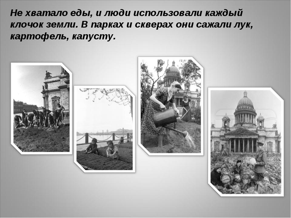 Не хватало еды, и люди использовали каждый клочок земли. В парках и скверах о...