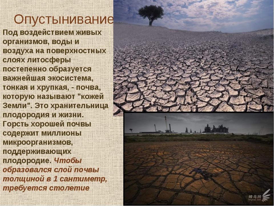 Опустынивание Под воздействием живых организмов, воды и воздуха на поверхност...