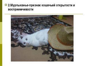 2.Мурлыканье-признак кошачьей открытости и восприимчивости