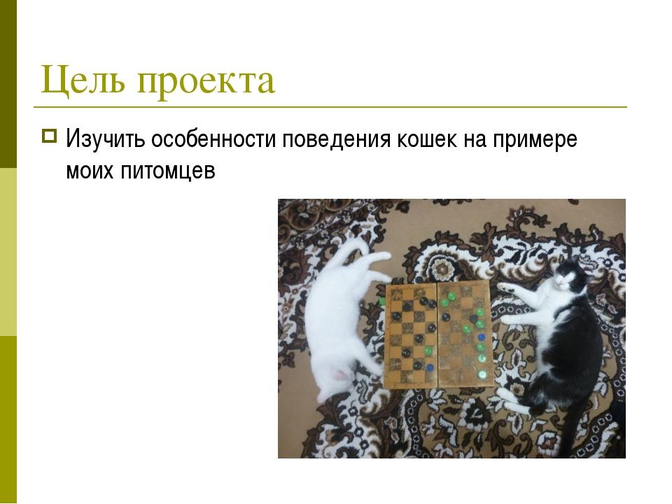 Цель проекта Изучить особенности поведения кошек на примере моих питомцев