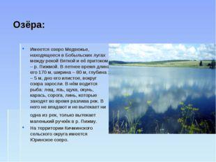 Озёра: Имеется озеро Медвежье, находящееся в Бобыльских лугах между рекой Вят
