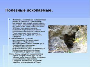 Полезные ископаемые. Из полезных ископаемых на территории района встречаются
