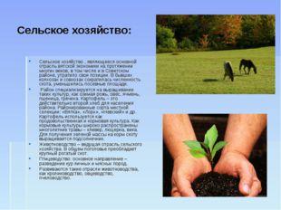 Сельское хозяйство: Сельское хозяйство , являющееся основной отрасль вятской